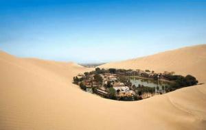 En ocasiones, una buena percha informativa es más difícil de encontrar que un oasis en un desierto.